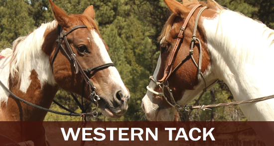Western and Endurance Horse Tack