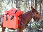 An orange Not-A-knot System helps being seen in the backcountry